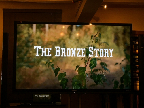 The Bronze Story